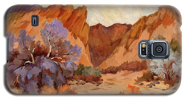 Box Canyon Galaxy S5 Case by Diane McClary