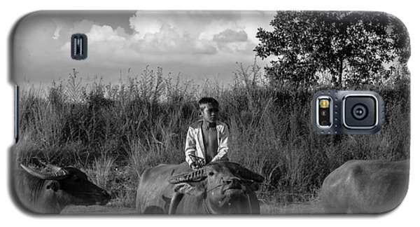 Galaxy S5 Case featuring the photograph Boy And Cows by Arik S Mintorogo