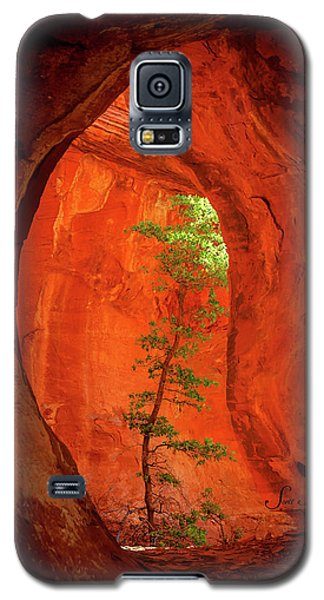 Boynton Canyon 04-343 Galaxy S5 Case