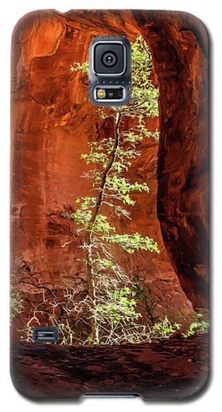 Boynton Canyon 07-034 Galaxy S5 Case