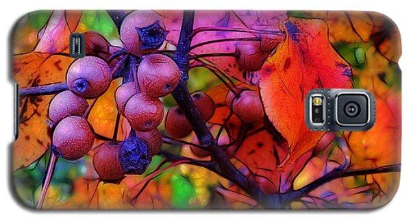 Bradford Pear In Autumn Galaxy S5 Case by Judi Bagwell