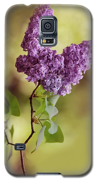 Branch Of Fresh Violet Lilac Galaxy S5 Case