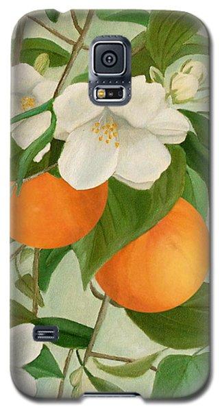 Branch Of Orange Tree In Bloom Galaxy S5 Case