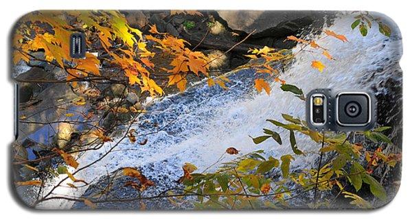 D30a-18 Brandywine Falls Photo Galaxy S5 Case