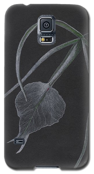 Brassalove Nordosa Orchid Galaxy S5 Case
