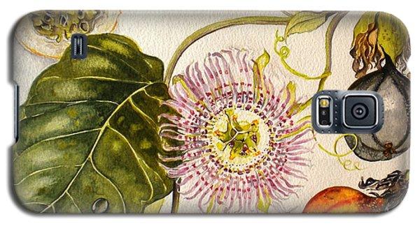 Galaxy S5 Case featuring the painting Brazilian Passion Fruit             Passiflora Ligularis Seme by Sandra Phryce-Jones