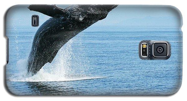 Breaching Humpback Whale Galaxy S5 Case