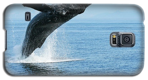 Breaching Humpback Whale Galaxy S5 Case