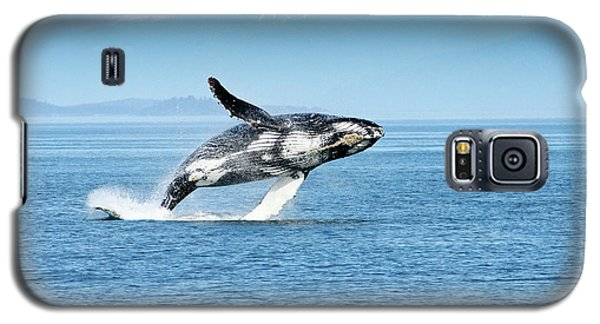 Breaching Humpback Whales Happy-4 Galaxy S5 Case