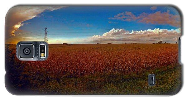 Bread Basket Dusk Galaxy S5 Case by Dave Luebbert