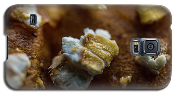 Galaxy S5 Case featuring the photograph Bread Macro Food by David Haskett