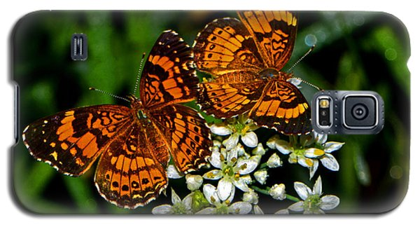 Galaxy S5 Case featuring the photograph Breakfast At The Gardens 010 by George Bostian