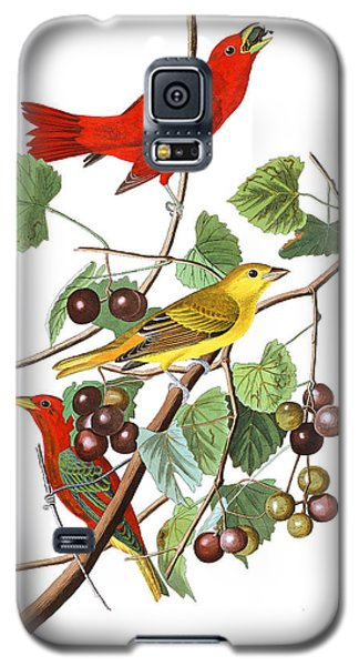 Galaxy S5 Case featuring the photograph Breakfast Time by Munir Alawi