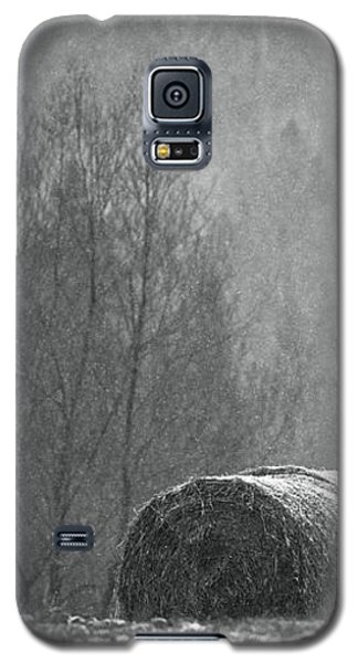Breathing Spell.. Galaxy S5 Case by Nina Stavlund
