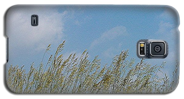 Galaxy S5 Case featuring the photograph Breezy Day by Sara  Raber