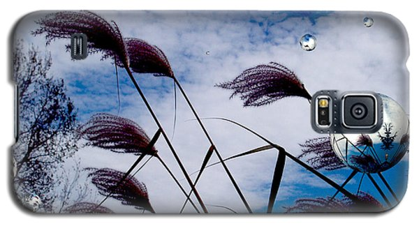 Breezy Galaxy S5 Case by Robert Orinski