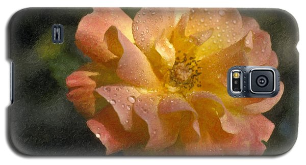 Galaxy S5 Case featuring the photograph Bridal Pink Yellow Hybrid Tea Rose Genus Rosa by David Zanzinger