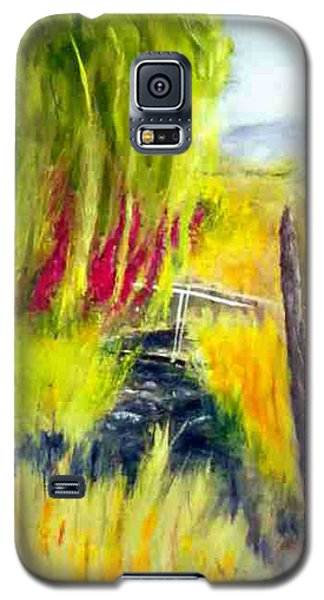 Bridge Over Small Stream Galaxy S5 Case by Sherril Porter