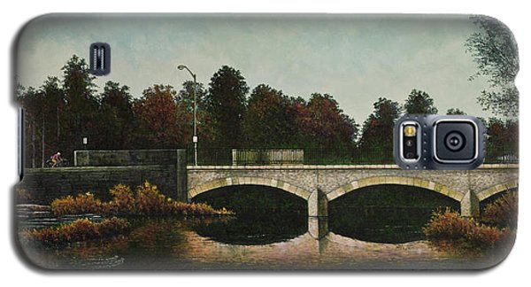 Galaxy S5 Case featuring the painting Bridges Of Forest Park Iv by Michael Frank