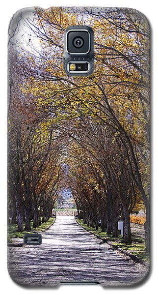 Bridlewood Galaxy S5 Case