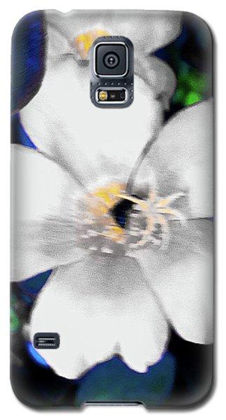 Bright Blue Accents White Vinca Galaxy S5 Case