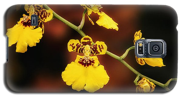 Orchid Galaxy S5 Case - Bright And Beautiful Orchids by Tom Mc Nemar
