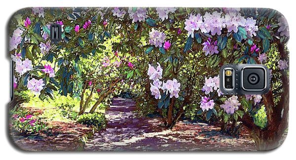 Boston Galaxy S5 Case - Bright And Beautiful Spring Blossom by Jane Small