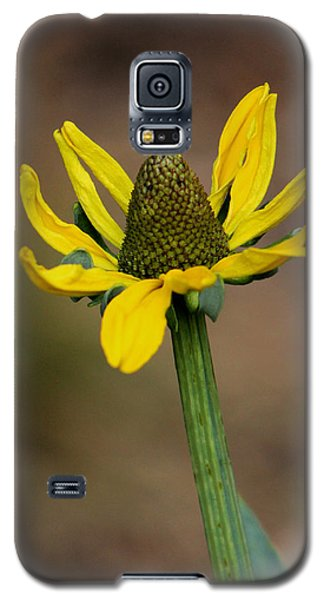 Galaxy S5 Case featuring the photograph Bright And Shining by Deborah  Crew-Johnson