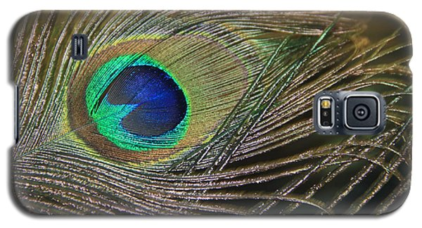 Bright Feather Galaxy S5 Case