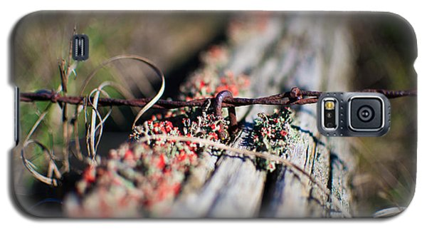 Bright Lichen Galaxy S5 Case