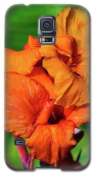 Bright Orange  Galaxy S5 Case