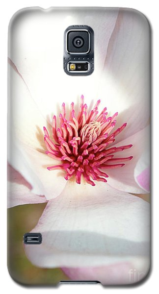 Saucer Magnolia Galaxy S5 Case - Bright Side by Carol Groenen