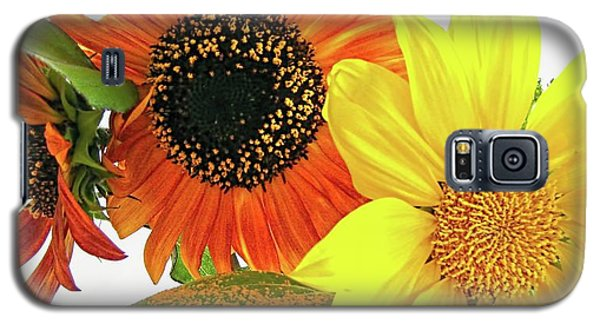 Galaxy S5 Case featuring the photograph Bright Trio by Kathy Bassett