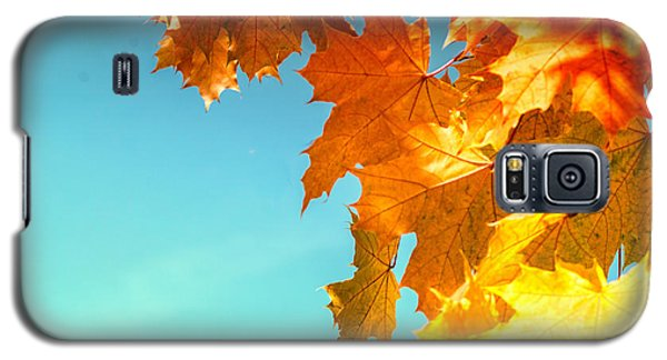 The Lord Of Autumnal Change Galaxy S5 Case by John Williams