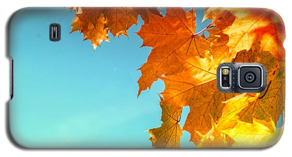 The Lord Of Autumnal Change Galaxy S5 Case