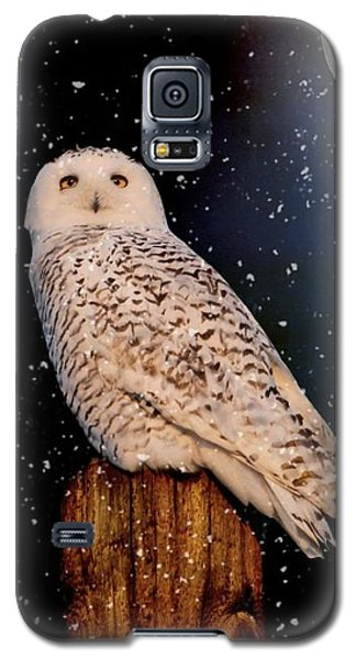 Brighter Than The Moonlight Galaxy S5 Case by Heather King