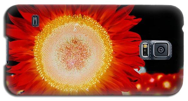 Brighter Than The Sun Flower Galaxy S5 Case