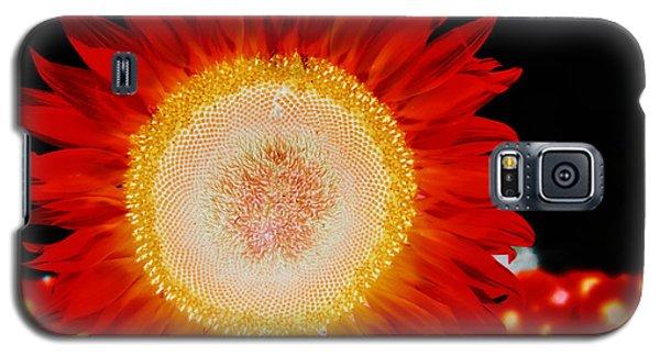 Brighter Than The Sun Flower Galaxy S5 Case