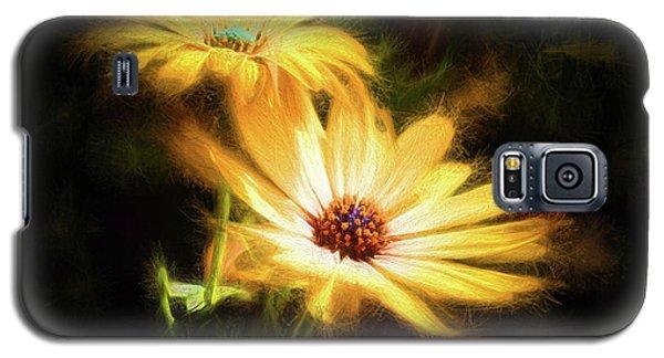 Brightest Sun Shining Galaxy S5 Case