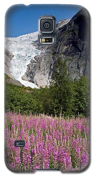 Briksdal Glacier And Wildflowers Galaxy S5 Case