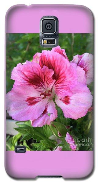 Brilliance Galaxy S5 Case
