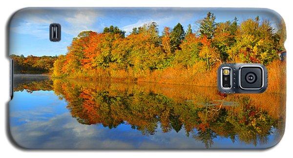 Brilliance Of Autumn Galaxy S5 Case