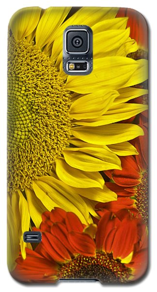 Galaxy S5 Case featuring the photograph Brilliant Autumn by Elsa Marie Santoro