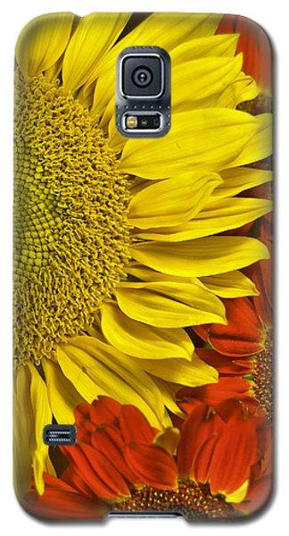 Brilliant Autumn Galaxy S5 Case