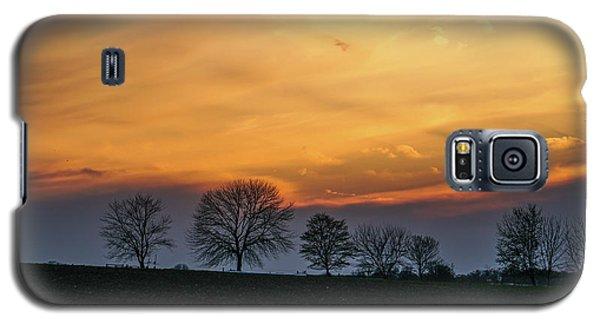 Brilliant Canopy Galaxy S5 Case