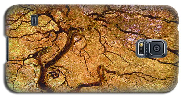 Brilliant Japanese Maple Galaxy S5 Case
