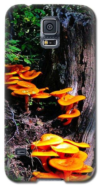 Brilliant Orange Galaxy S5 Case