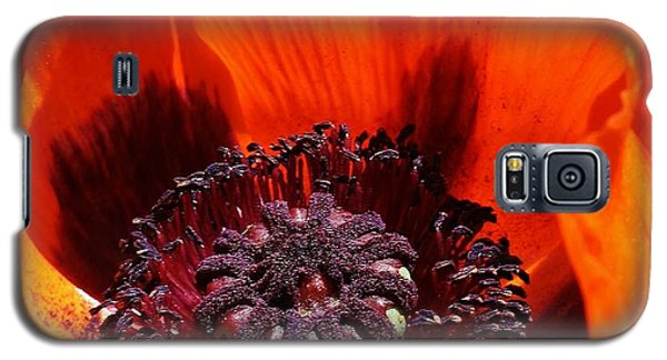 Galaxy S5 Case featuring the photograph Brilliant Poppy by Bruce Bley