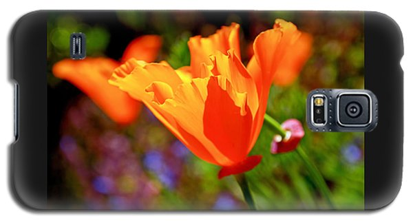 Brilliant Spring Poppies Galaxy S5 Case by Rona Black