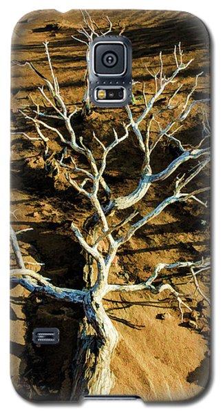 Brins Mesa 07-104 Stripped Bare Galaxy S5 Case by Scott McAllister